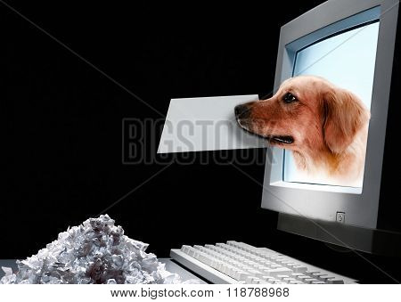 dog coming out of the computer screen with letter in mouth