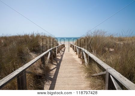 Wooden Path To Sea Horizontal