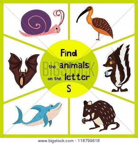 Funny Learning Maze Game, Find All 3 Cute Wild Animals With The Letter S, Forest Skunk, Shark Predat