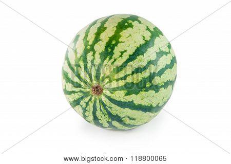 Whole Green Watermelon
