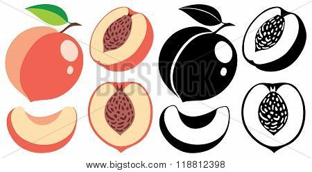 Vector Color And Monochrome Peaches