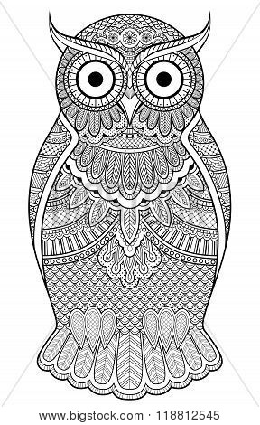 Graphic Ornate Owl