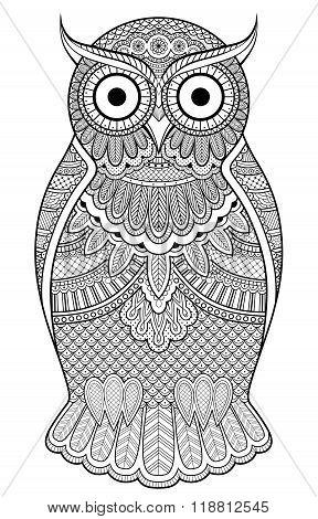 Graphic Ornate Owl