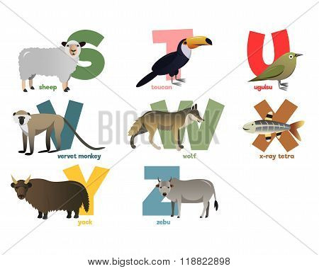 Vector image of alphabet with animals
