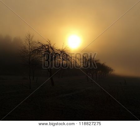 Mystical Sunrise, South Bohemia