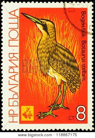 Great Bittern (botaurus Stellaris) On Postage Stamp