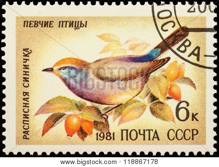 Titmouse Leptopoecile Sophiae On Postage Stamp