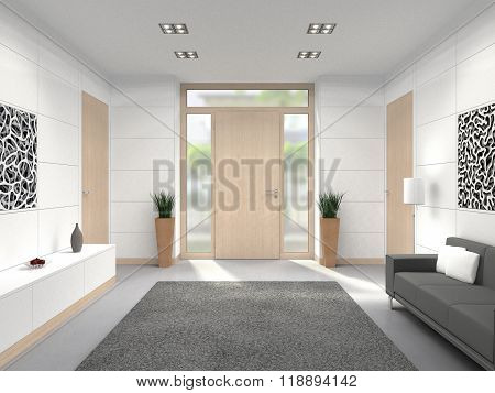 modern foyer front door interior