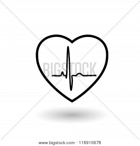 White heart rate and pulse