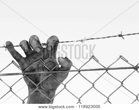 Dirty and discolored hand clinging to a steel barb wire fence, black and white