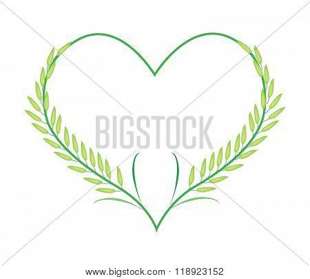 Green Rice Or Jasmine Rice In A Heart Shape