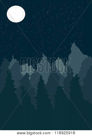 Landscape with pine tree forest at night