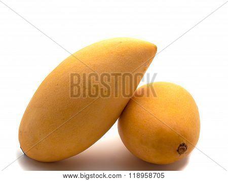 Mango Yellow Fruit