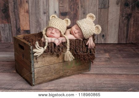 Twin Baby Boys Sleeping In A Wooden Crate