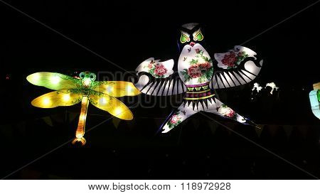 Dragonfly And Bird Handmade Chinese Lantern