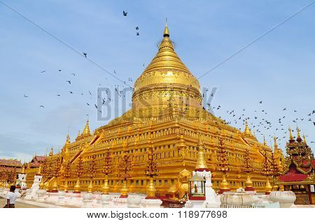 Most sacred Shwezigon Pagoda in Bagan, Myanmar.