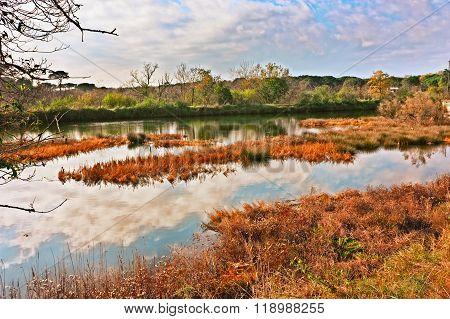 Landscape Of The Po Delta Park In Ravenna, Italy