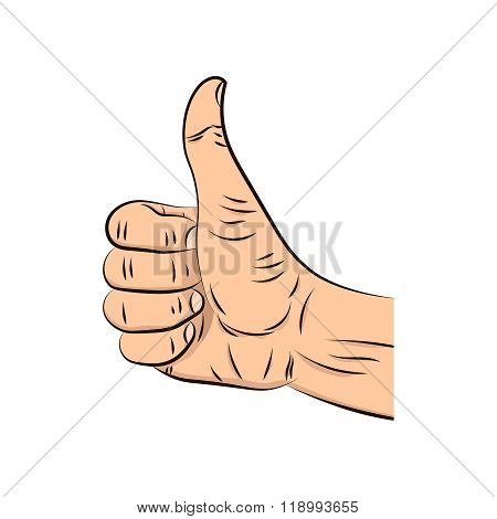 Realistic Hand With Thumbs Up Isolated