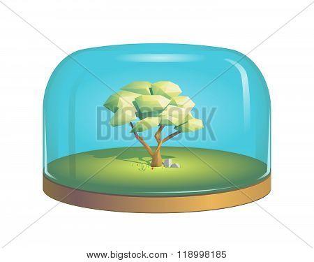 Tree inside a glass dome