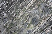 stock photo of gneiss  - Gneiss rock with patches of lichen - JPG