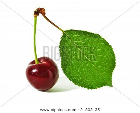 cherry and leaf