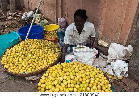 Fruit Vendor India