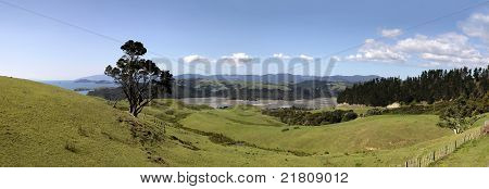 Meadows And Hills On The Coromandel Peninsula
