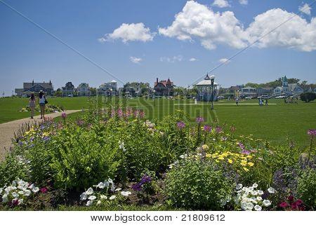 Ocean Park View