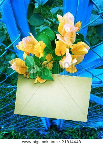 Yellow Flower with notepad
