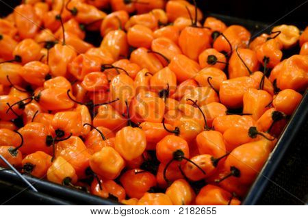 Habenero Peppers