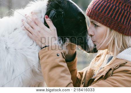 poster of Beautiful woman kissing her dog outdoors. Girl with her dog. Cute dog loves her owner.