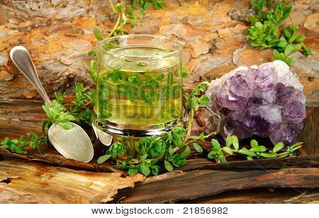 Healing Tea From Brahmi