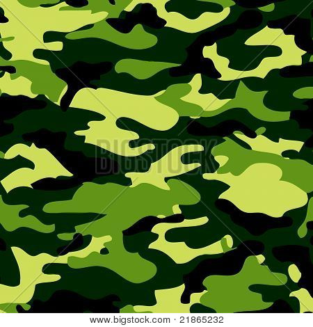 Camoflauge Vector Art-Background Image
