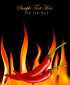 stock photo of chili peppers  - Hot chili peppers in fire - JPG