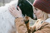 Beautiful woman kissing her dog outdoors. Girl with her dog. Cute dog loves her owner.  poster