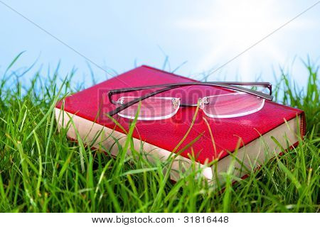 Photo of a red hardback book in grass on a sunny day with spectacles on top.