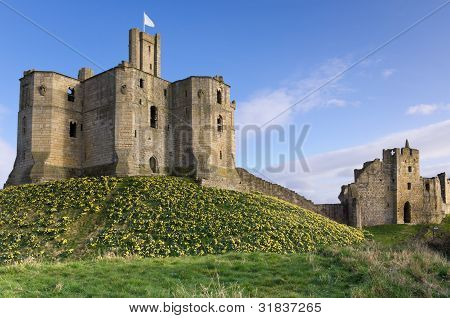 Warkworth Castle In Spring