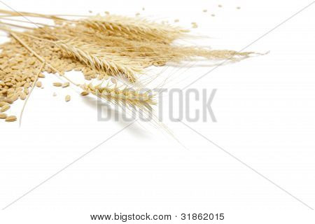 Cereal Food Background