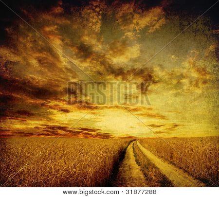 ländliche unbefestigte Straße durch das Feld