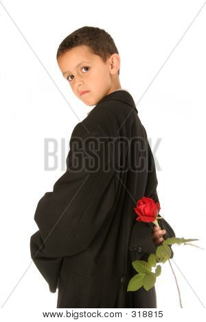 Sweet Young Man With Rose