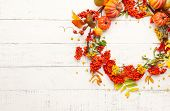 Autumn concept with pumpkins, flowers, autumn leaves and  rowan berries on a white rustic background poster