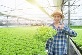 Fresh Organic Green Oak In Hand Of Out Of Focus Asian Farmer Woman With Trump Up In Greenhouse Organ poster