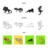 Vector Design Of Tail And Fauna Logo. Collection Of Tail And Environment Stock Symbol For Web. poster