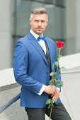 Well Groomed Macho Tailored Suit. Make Good First Impression. Valentines Day And Anniversary. Romant poster