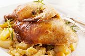stock photo of gobbler  - Chicken roasted with potato - JPG