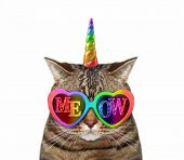 The Cat Unicorn Wears Color Sunglasses With Inscription Meow. White Background. Isolated. poster