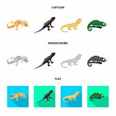 Isolated Object Of Tail And Fauna Icon. Set Of Tail And Environment Vector Icon For Stock. poster