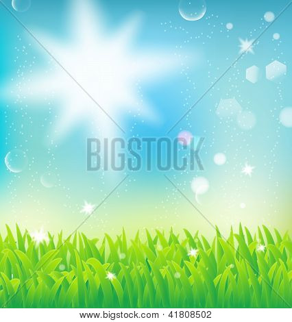 Natural Landscape With Sunlight And Grass