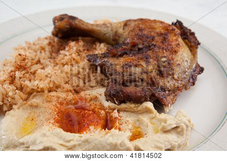 Plate of Mediterranean style chicken dinner