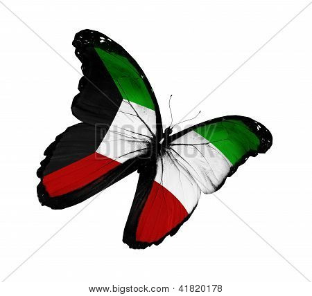Kuwaiti Flag Butterfly Flying, Isolated On White Background